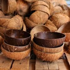 ecofriendly coconut bowl