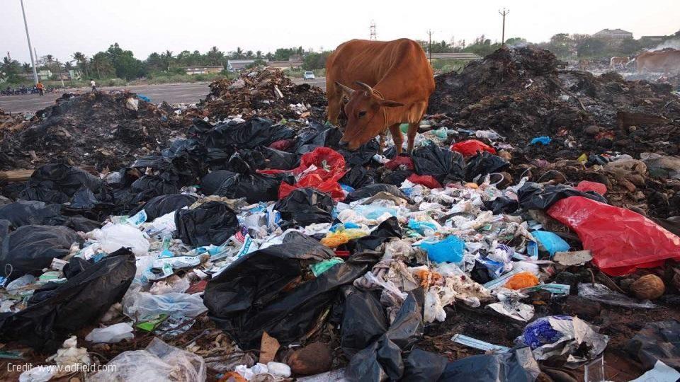healthcare waste africa