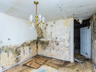 prevent-water-damage