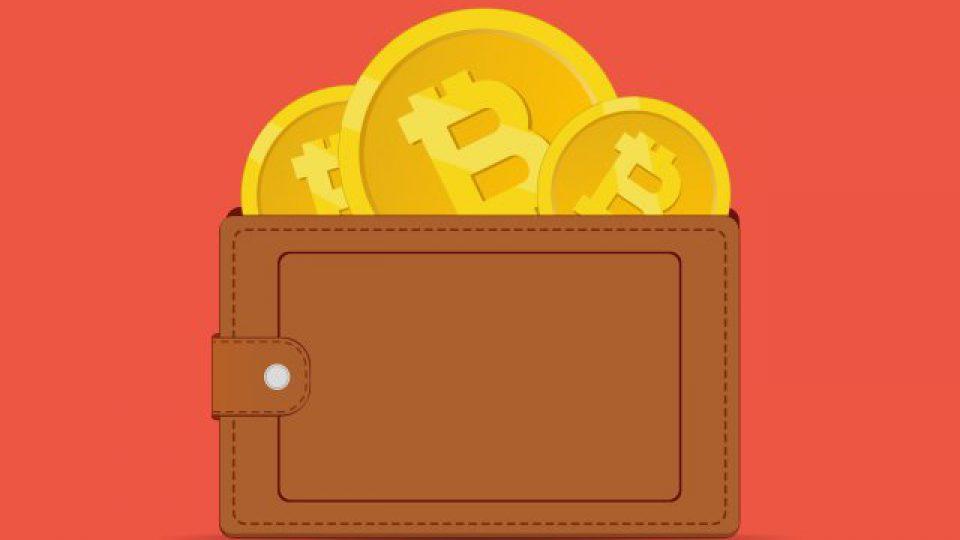 crypto-wallets