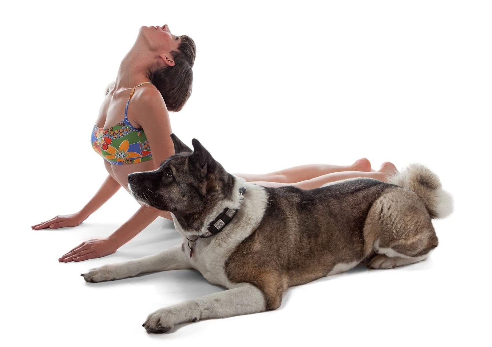 yoga-for-doga