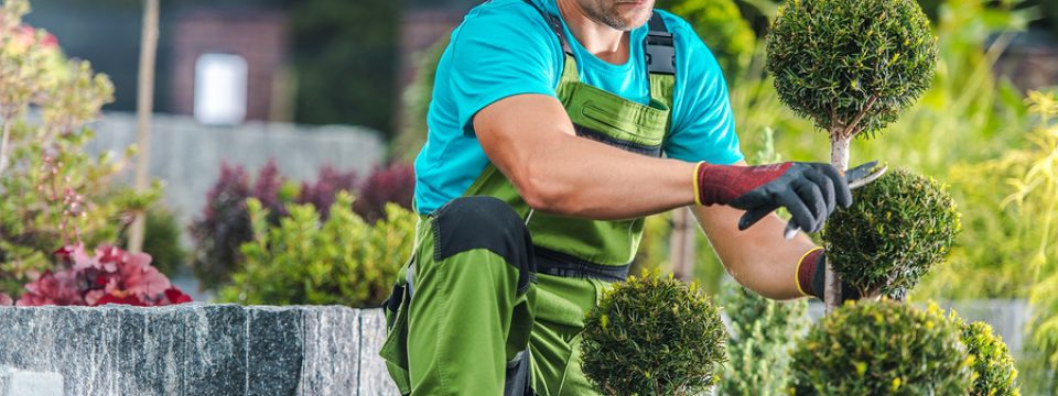 hiring a professional garden landscaper